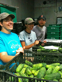 Worker-owners with fresh cucumbers at Real Pickles in Greenfield. Photo: Real Pickles